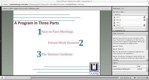 Lilead Fellows Webinar Q and A Screenshot